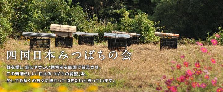 高知市・四国日本みつばちの会