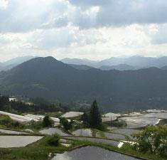 山下農園のある本山町はお米作りに最適の場所